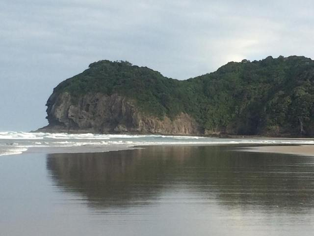 Piha Beach Laurent Law